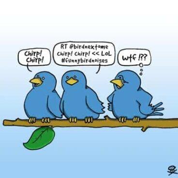 Three Twitter Birds